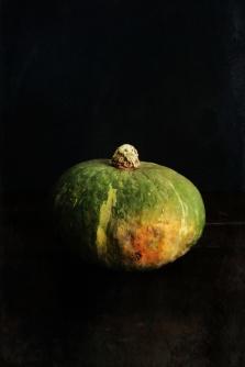 still life, liana solis, milano, food photographer, fotografo gastronomico, calabaza