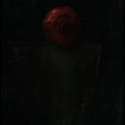 Still life dark